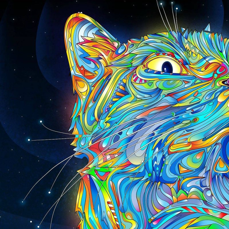 10 Latest Trippy Desktop Wallpaper Hd FULL HD 1080p For PC Background 2020 free download trippy wallpapers hd wallpaper cave 800x800