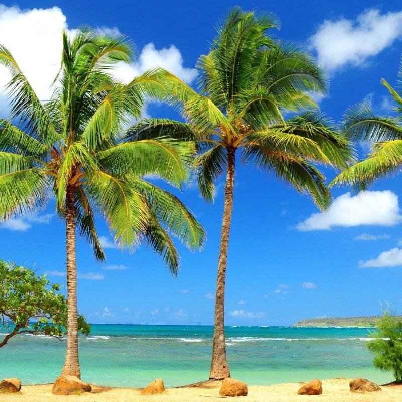 10 Best Tropical Beach Desktop Backgrounds FULL HD 1920×1080 For PC Background 2018 free download tropical beach desktop wallpaper hd images full paradise widescreen 800x800