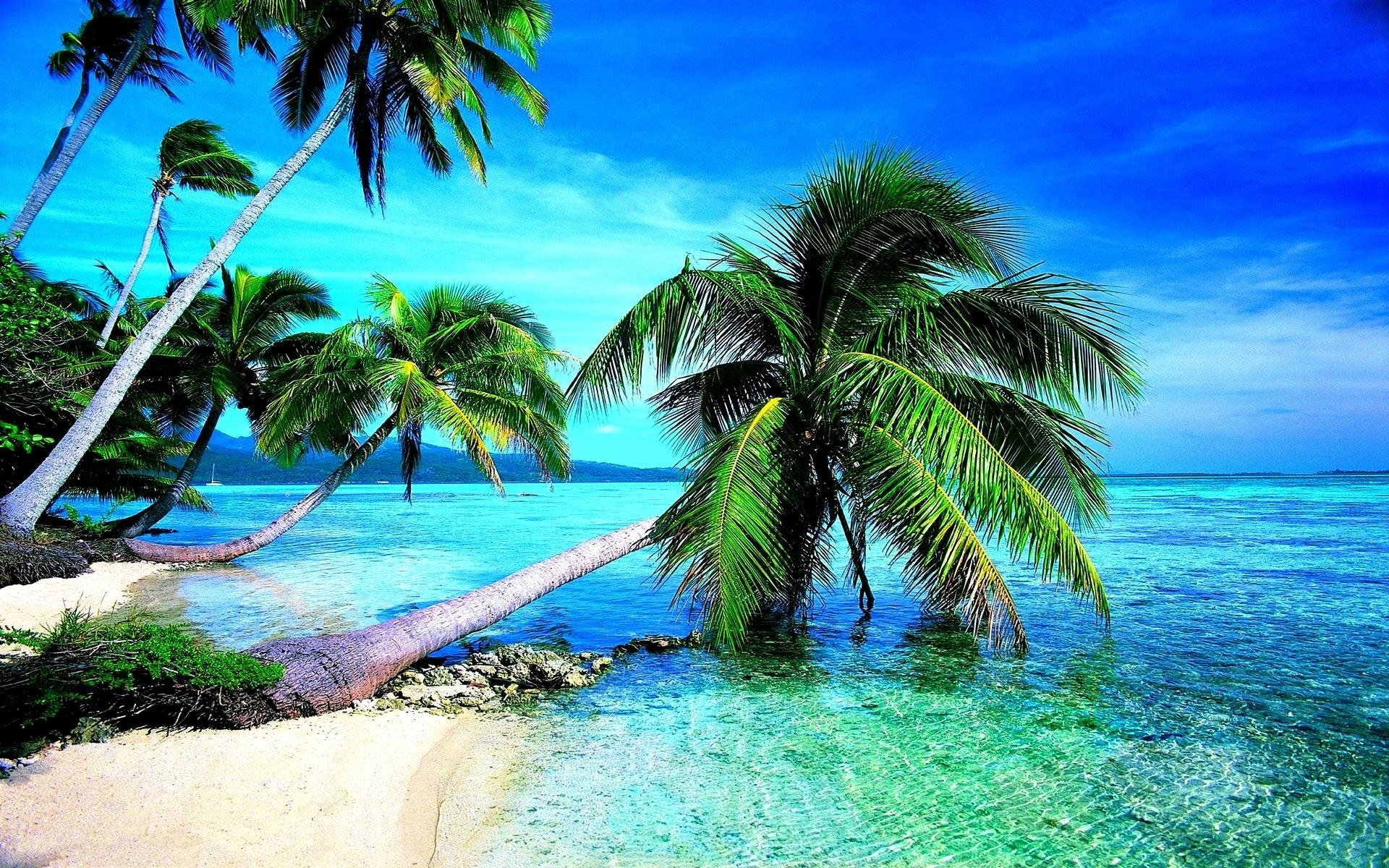 tropical beach hd wallpaper (68+ images)