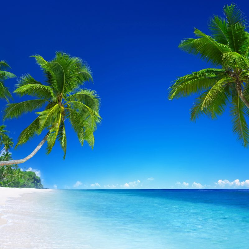 10 Latest Tropical Beach Wallpaper Hd FULL HD 1920×1080 For PC Desktop 2020 free download tropical beach paradise 5k wallpapers hd wallpapers id 18455 800x800