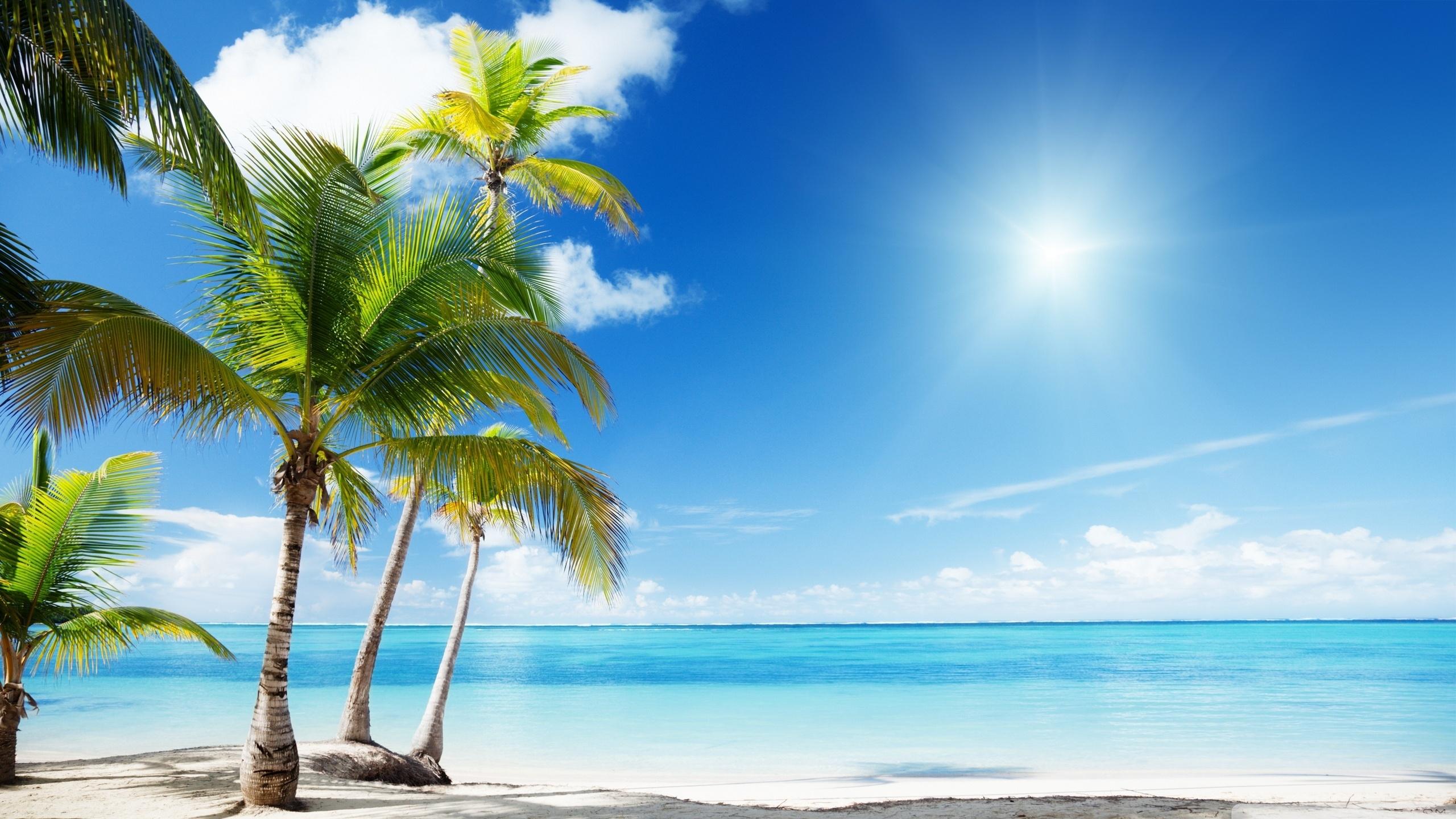 tropical beach paradise ❤ 4k hd desktop wallpaper for 4k ultra hd