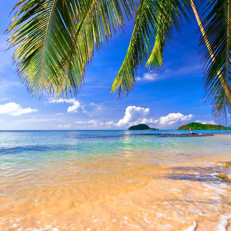 10 Latest Tropical Beach Wallpaper Hd FULL HD 1920×1080 For PC Desktop 2020 free download tropical beach wallpapers 800x800