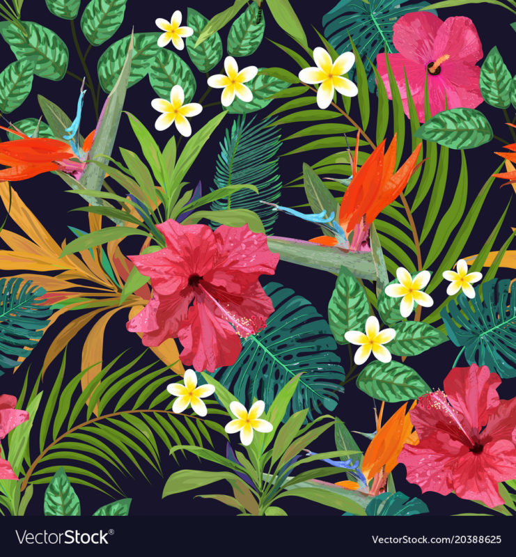 10 Latest Images Of Tropical Flowers FULL HD 1080p For PC Background 2021 free download tropical flowers seamless pattern colorful vector image 741x800