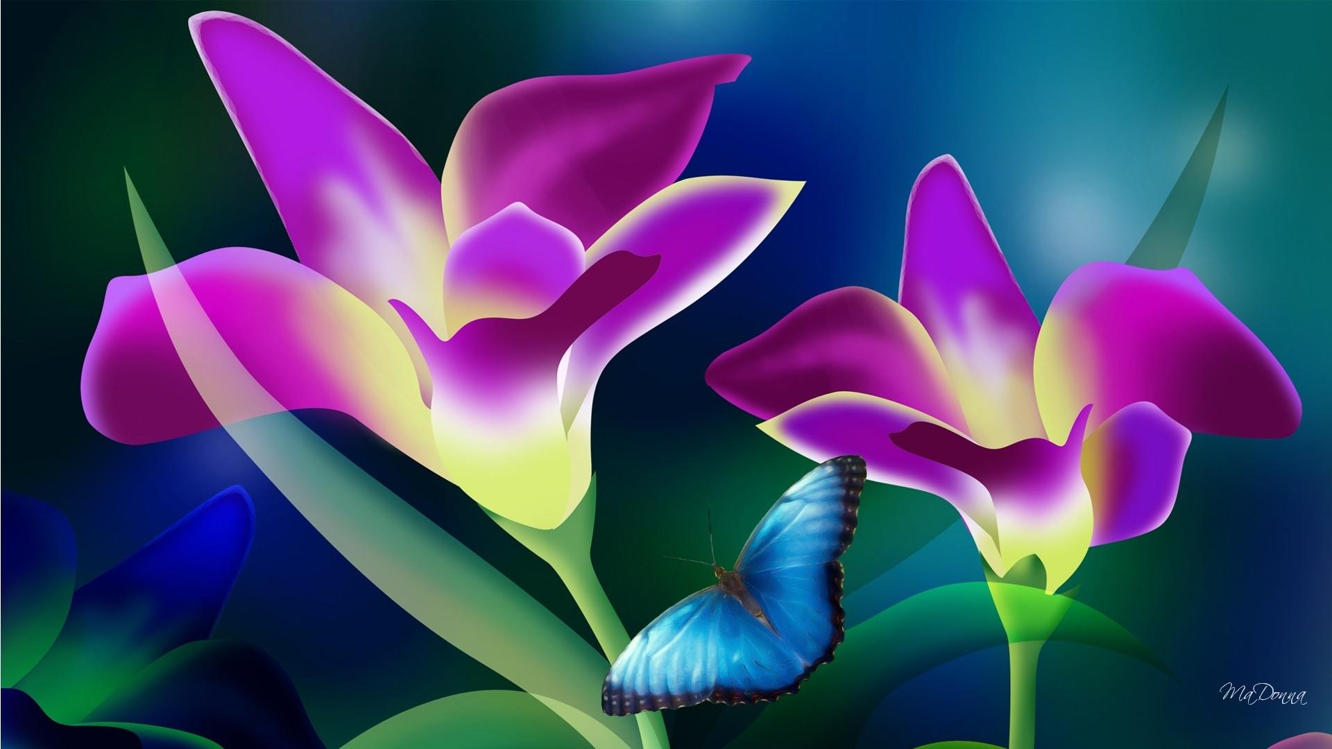 tropical flowers wallpaper   1920x1080   #42569   flowers