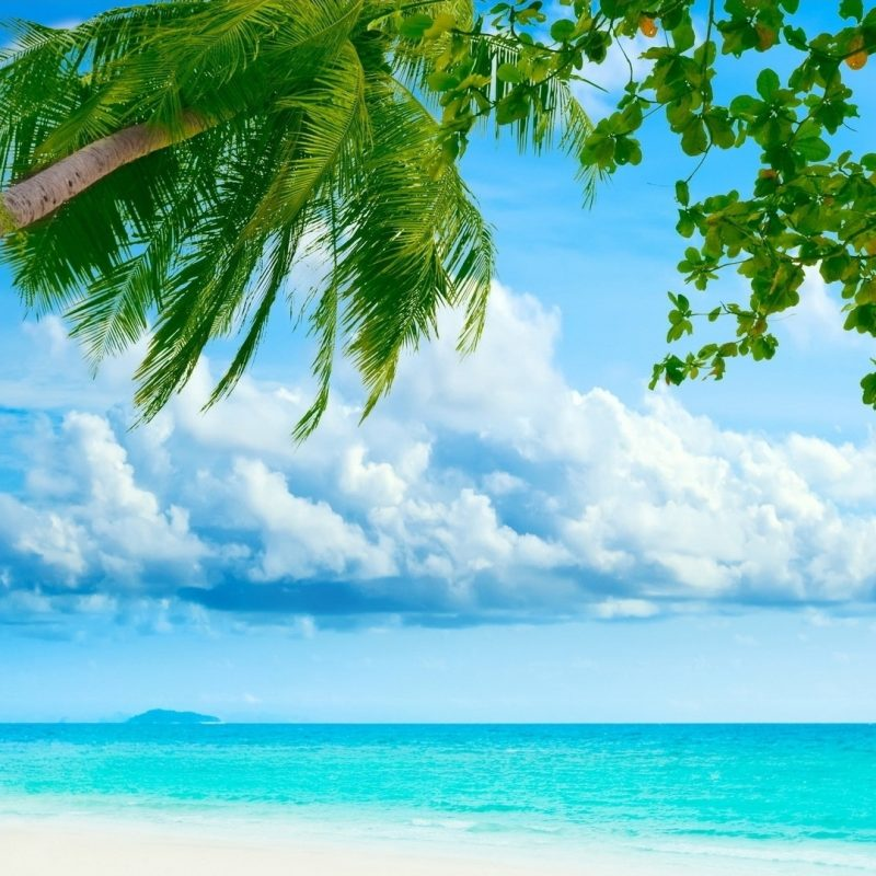 10 Most Popular Tropical Island Desktop Wallpaper FULL HD 1080p For PC Desktop 2018 free download tropical island desktop wallpaper 1920x1080 800x800