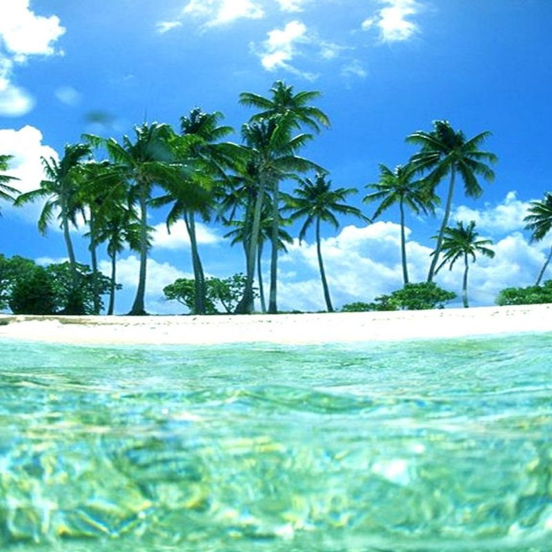 10 Most Popular Tropical Island Desktop Wallpaper FULL HD 1080p For PC Desktop 2018 free download tropical island sunset wallpaper desktop background epic wallpaperz 800x800