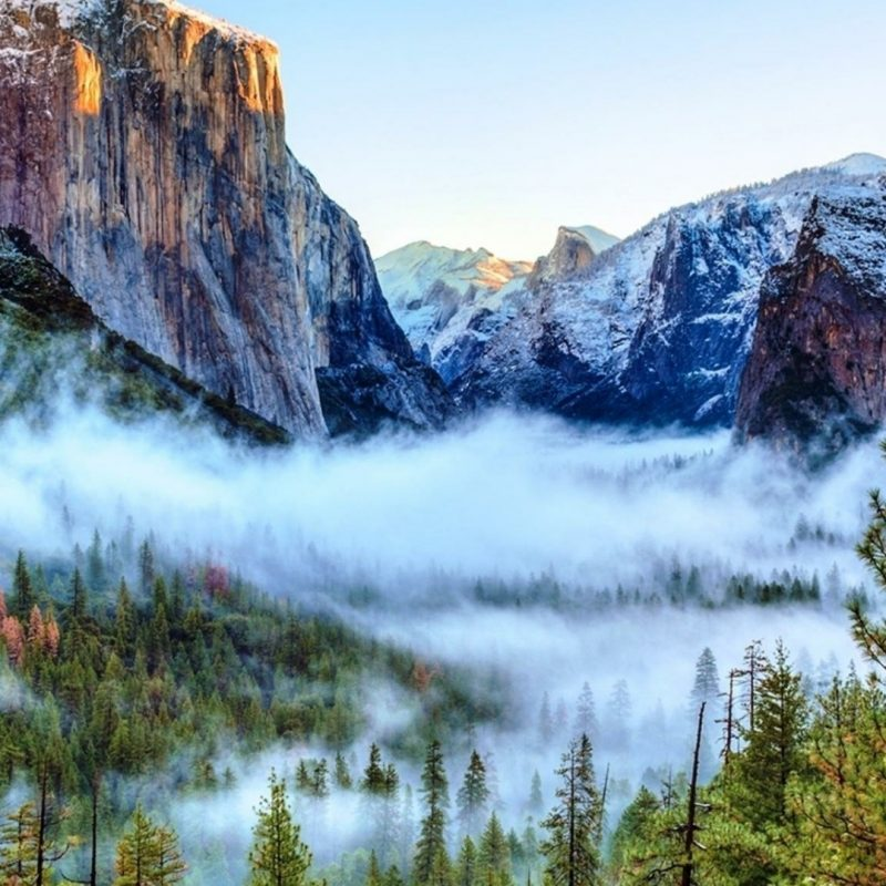 10 Best Yosemite National Park Wallpapers FULL HD 1920×1080 For PC Background 2020 free download tunnel view of foggy yosemite valley yosemite national park 800x800