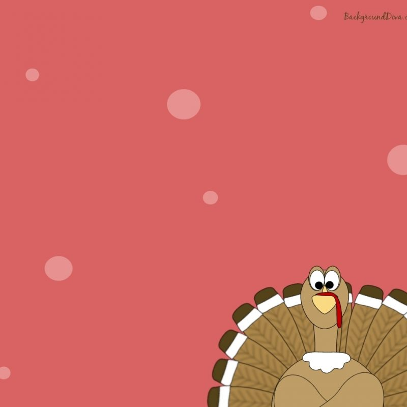 10 New Turkeys For Thanksgiving Wallpaper FULL HD 1080p For PC Desktop 2020 free download turkey thanksgiving wallpaper festival collections 800x800