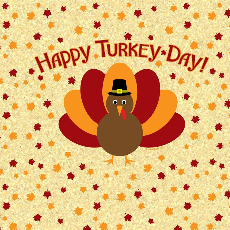 10 New Turkeys For Thanksgiving Wallpaper FULL HD 1080p For PC Desktop 2018 free download turkey wallpapers thanksgiving wallpaper cave 800x800