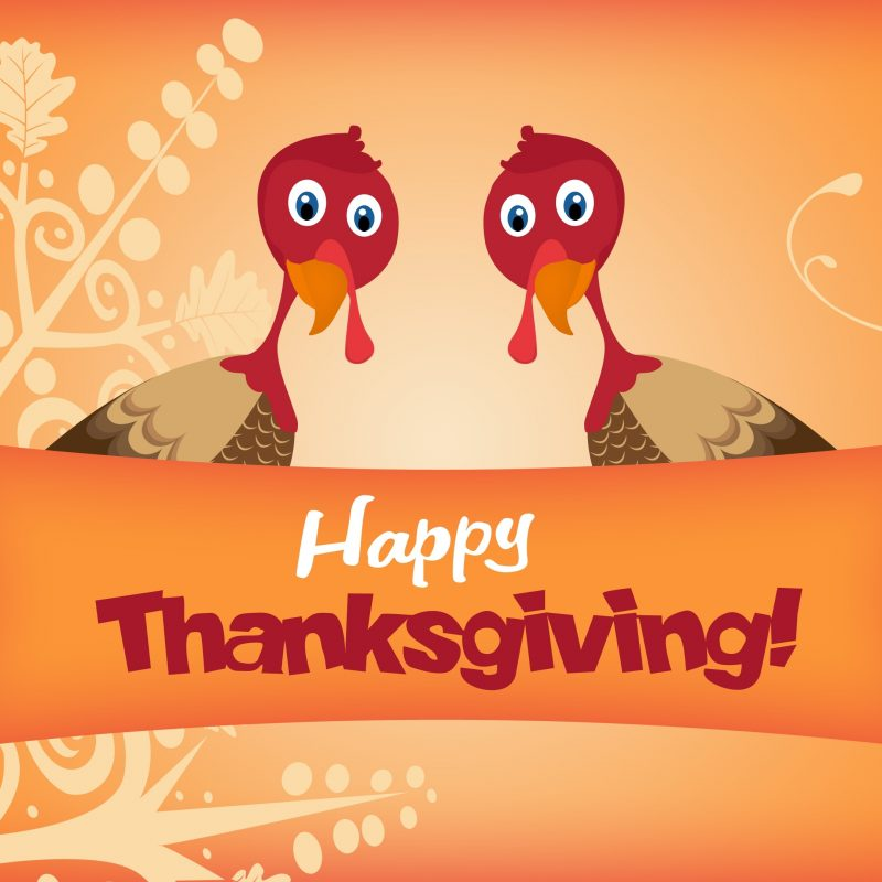 10 Top Happy Thanksgiving Turkey Wallpaper FULL HD 1920×1080 For PC Desktop 2020 free download two turkeys wishing you happy thanksgiving wallpaper holiday 800x800