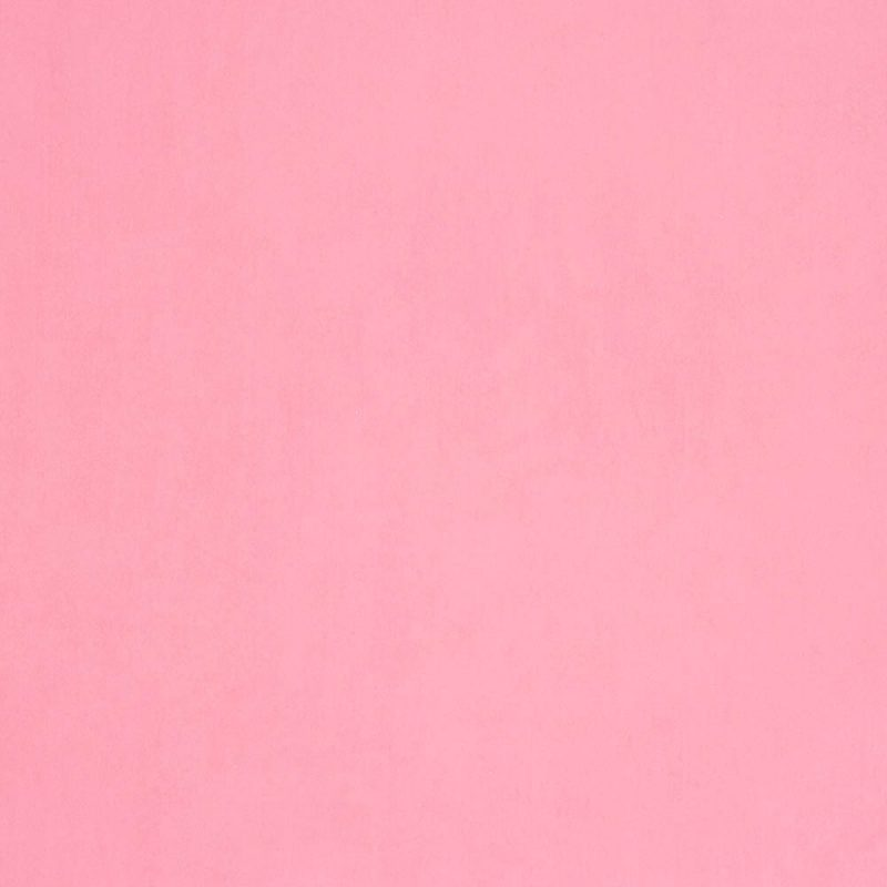 10 Most Popular Plain Light Pink Wallpaper FULL HD 1080p For PC Background 2018 free download undefined plain pink wallpaper 30 wallpapers adorable wallpapers 800x800