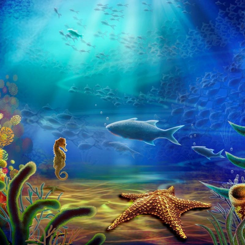 10 Best Under The Sea Wallpaper FULL HD 1920×1080 For PC Desktop 2018 free download under the sea background c2b7e291a0 download free stunning full hd 800x800