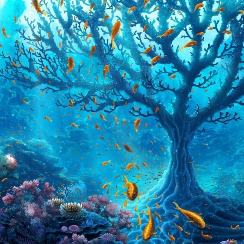 10 New Hd Underwater Wallpapers 1080P FULL HD 1920×1080 For PC Desktop 2020 free download underwater world hd nature 4k wallpapers images backgrounds 800x800