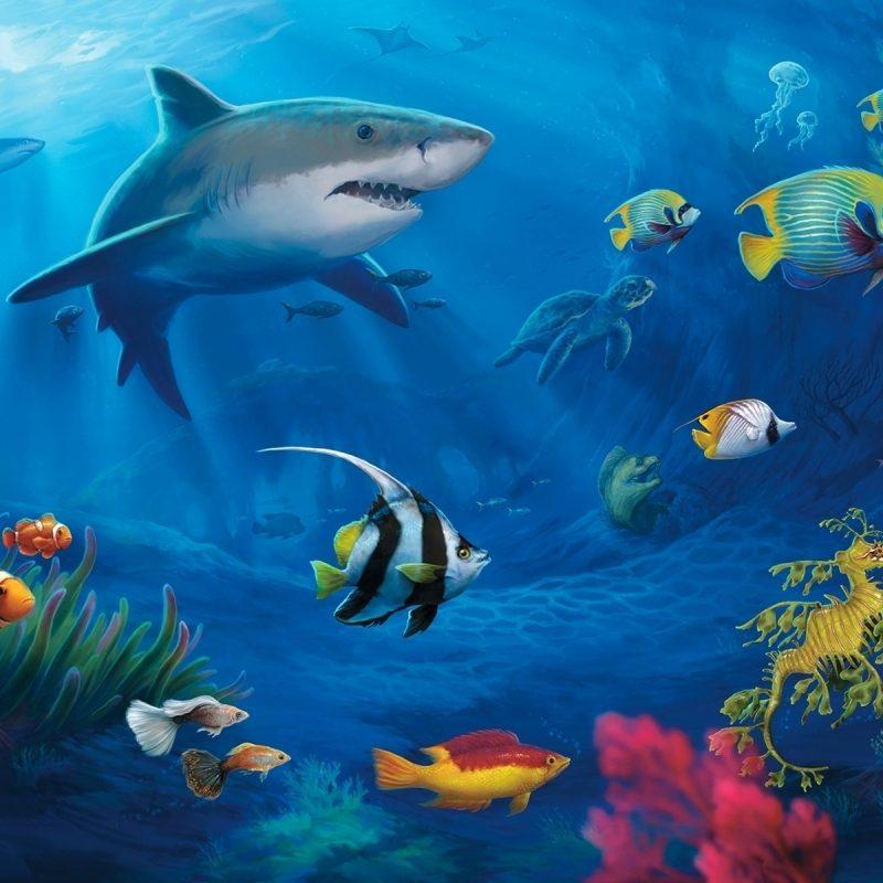 10 Latest Underwater Wallpaper Desktop Hd FULL HD 1920×1080 For PC Background 2018 free download underwater world hd wallpaper media file pixelstalk 800x800