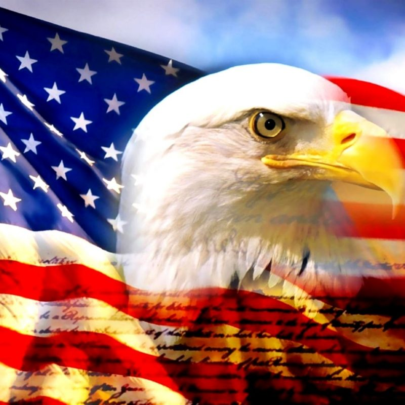 10 Latest Usa Flag Eagle Wallpaper FULL HD 1920x1080 For PC Background 2018 Free