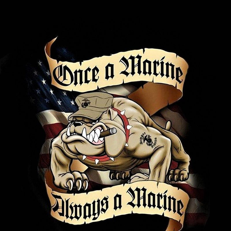 10 Best Usmc Wallpaper For Android FULL HD 1920×1080 For PC Background 2020 free download usmc iphone wallpaper 52 images 800x800