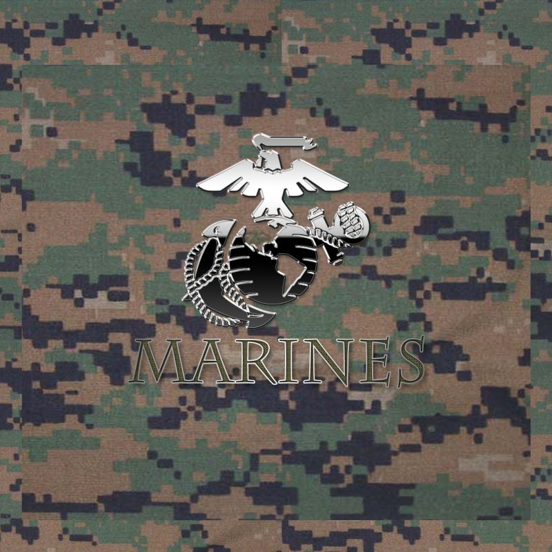 10 Latest Marines Logo Wallpaper Camo FULL HD 1080p For PC Background 2018 free download usmc logo wallpapers group 56 3 800x800