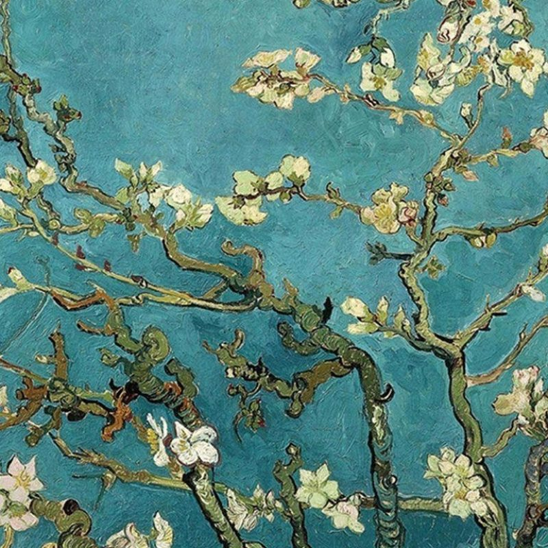 10 Top Van Gogh Almond Blossoms Wallpaper FULL HD 1920×1080 For PC Background 2018 free download van gogh blossom wallpapers wallpaper cave 800x800