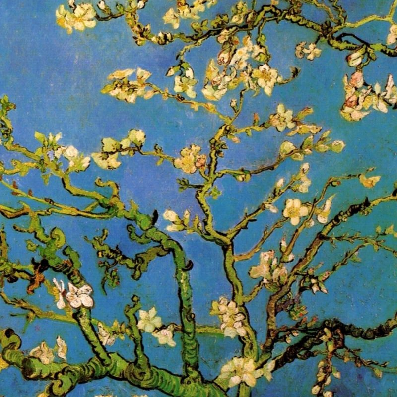 10 Latest Van Gogh Painting Wallpaper FULL HD 1080p For PC Background 2020 free download van gogh wallpapers a r t pinterest van gogh wallpaper 800x800