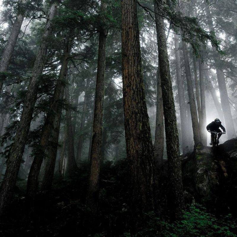 10 New Mountain Bike Trail Wallpaper FULL HD 1920×1080 For PC Desktop 2021 free download vehicles for mountain bike wallpaper whistler mountain biking 800x800