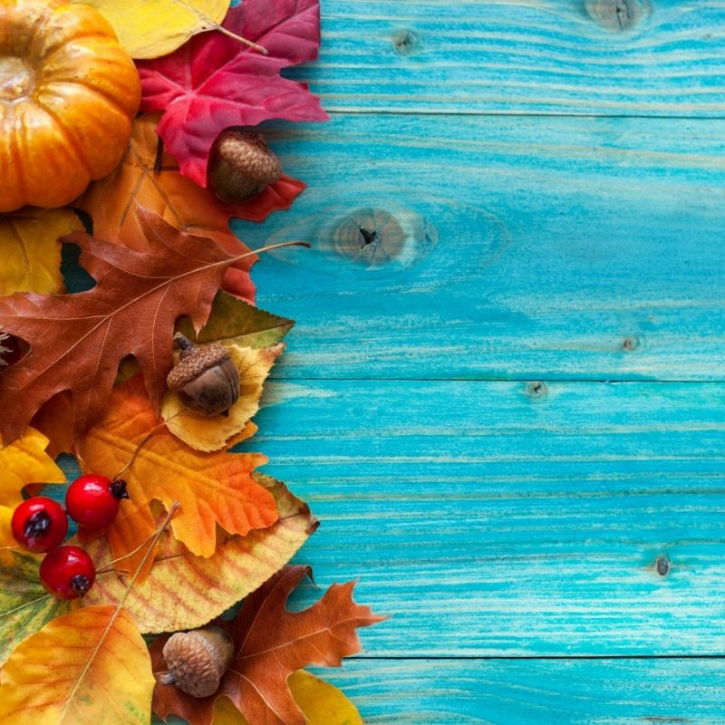 10 New Fall Wallpaper With Pumpkins FULL HD 1920×1080 For PC Background 2020 free download vintage autumn wallpaper autumn leaves tree vintage acorns berries 800x800