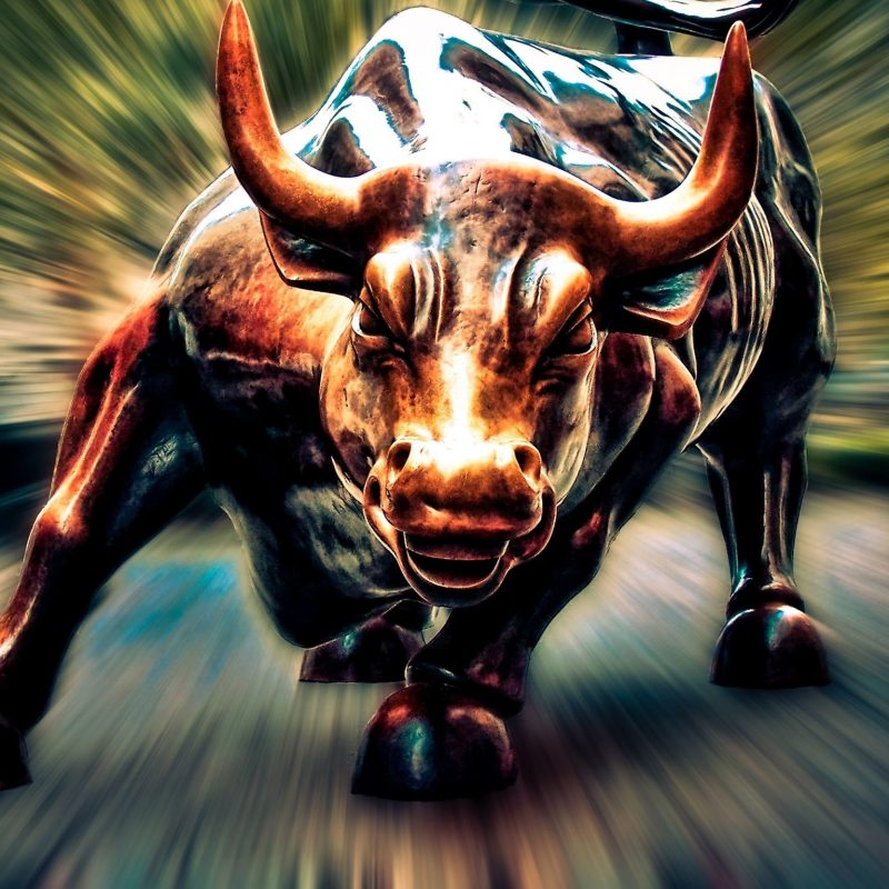 10 Most Popular Wall Street Bull Wallpaper FULL HD 1920×1080 For PC Background 2020 free download wall street bull images beautiful images hd pictures desktop 800x800