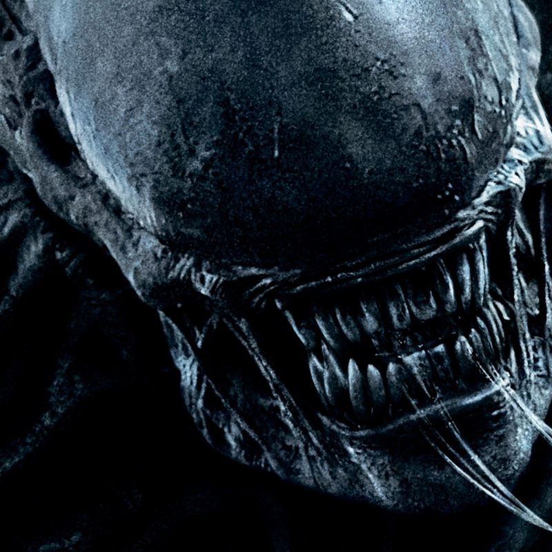 10 New Alien Covenant Hd Wallpaper FULL HD 1920×1080 For PC Background 2021 free download wallpaper alien covenant hd movies 7469 800x800