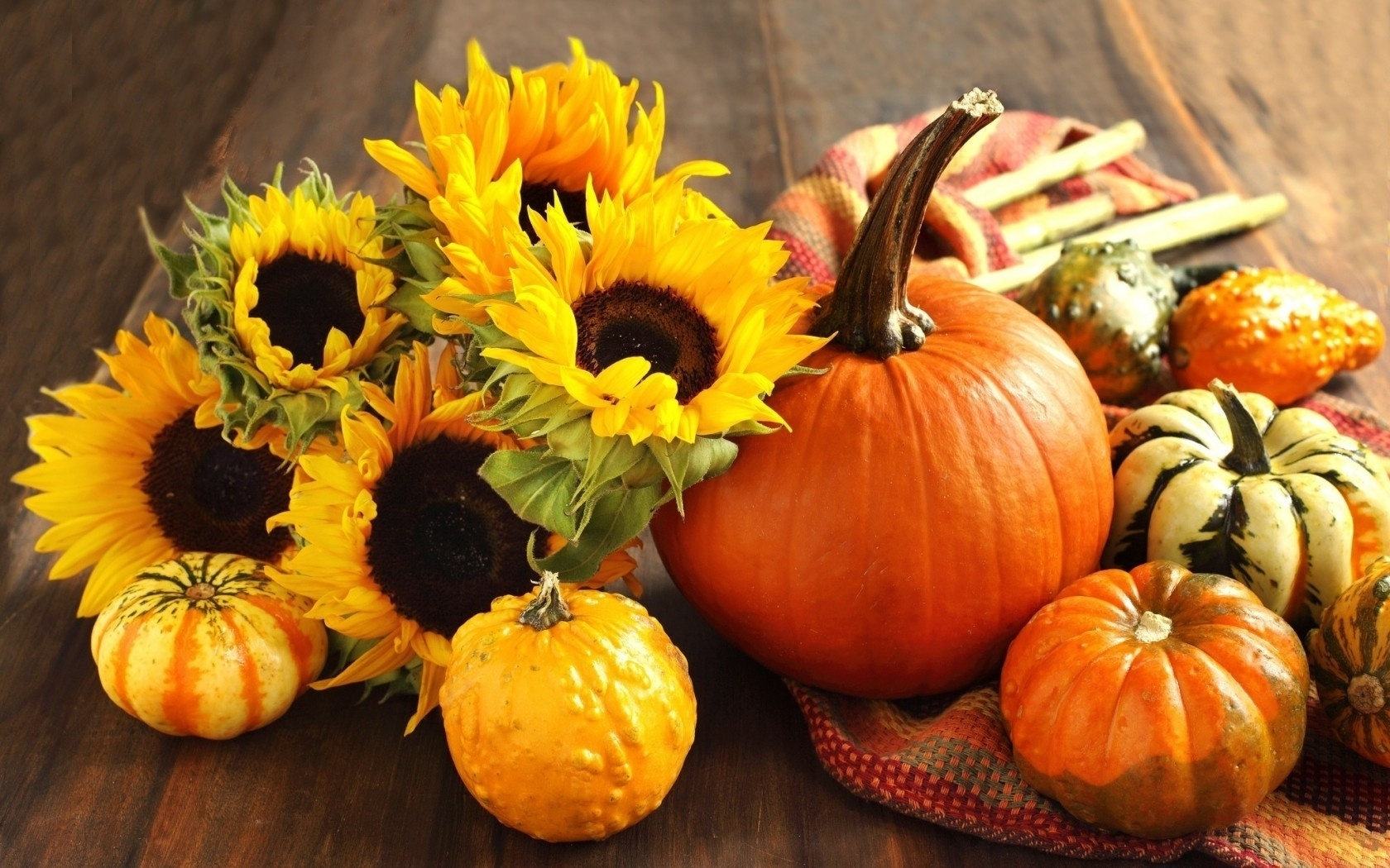 wallpaper autumn, pumpkin, sunflower, harvest, still life desktop