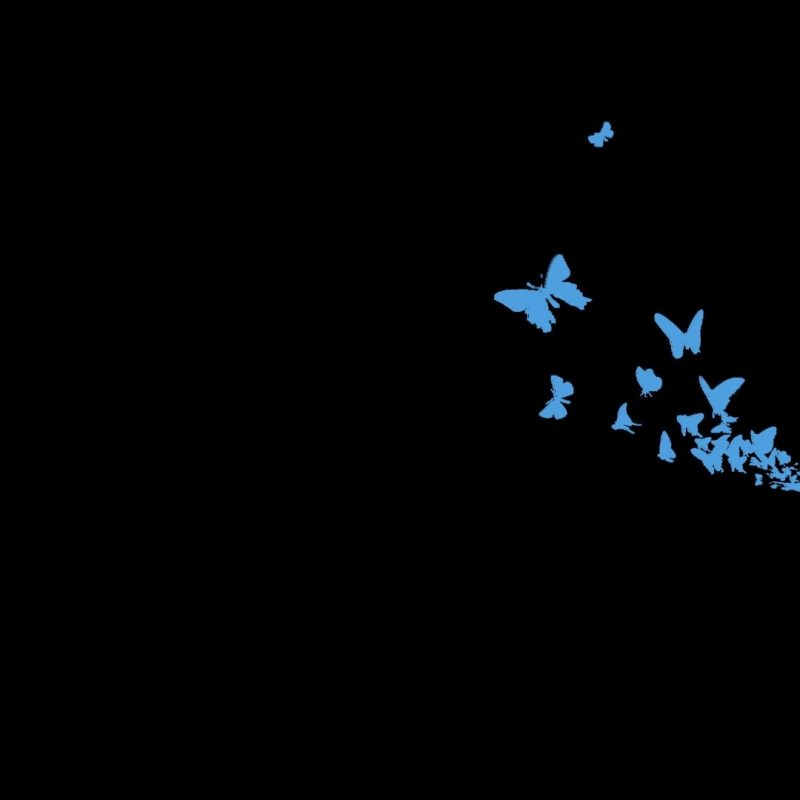 10 Top Dark Minimalist Desktop Wallpaper FULL HD 1080p For PC Desktop 2018 free download wallpaper dark minimalism butterfly light darkness screenshot 800x800