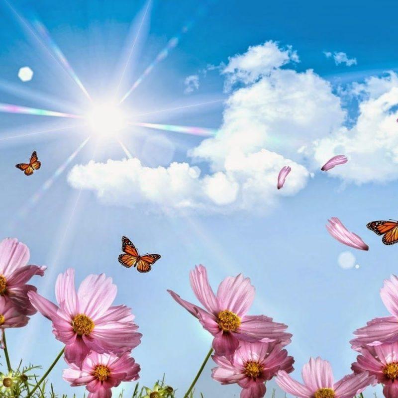 10 Top Beautiful Flower Wallpapers For Desktop Full Screen FULL HD 1920x1080 PC