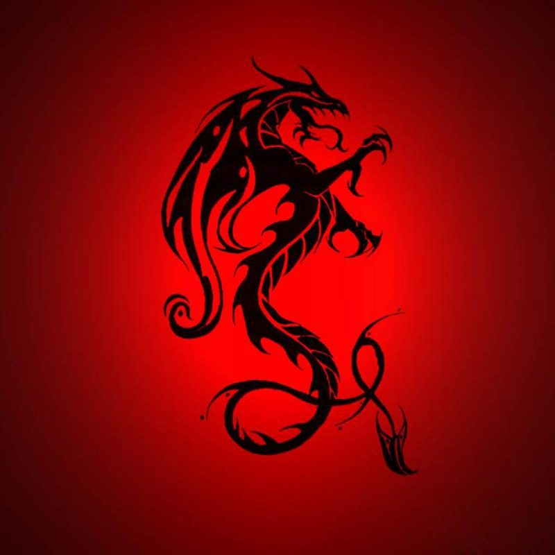 10 Latest Red Dragon Wallpaper Hd 1080P FULL HD 1920×1080 For PC Background 2018 free download wallpaper dragon wallpapers 800x800