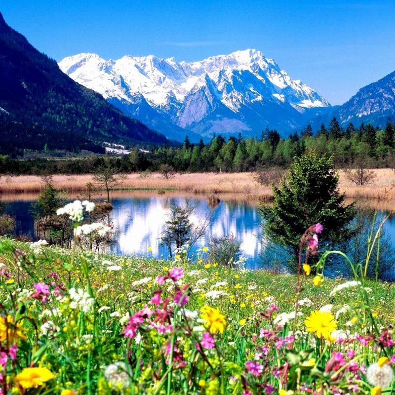 10 New Spring Pictures For Desktop FULL HD 1920×1080 For PC Desktop 2020 free download wallpaper for spring background full hd high quality desktop 800x800