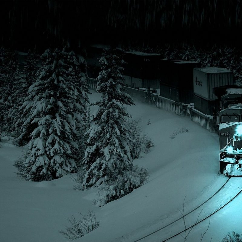10 Latest Dark Winter Night Wallpaper FULL HD 1920×1080 For PC Background 2020 free download wallpaper forest spruce train locomotive night snow tree 800x800