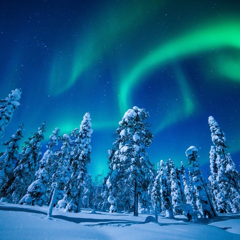 10 New Winter Northern Lights Wallpaper FULL HD 1920×1080 For PC Desktop 2020 free download wallpaper forest winter frosted trees aurora borealis northern 800x800