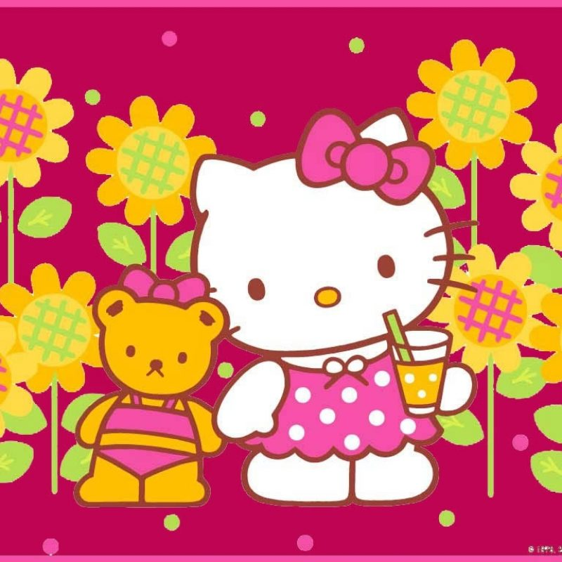 10 New Hello Kitty Wallpaper Download FULL HD 1920×1080 For PC Background 2018 free download wallpaper hello kitty download hello kitty wallpaper download 007 800x800