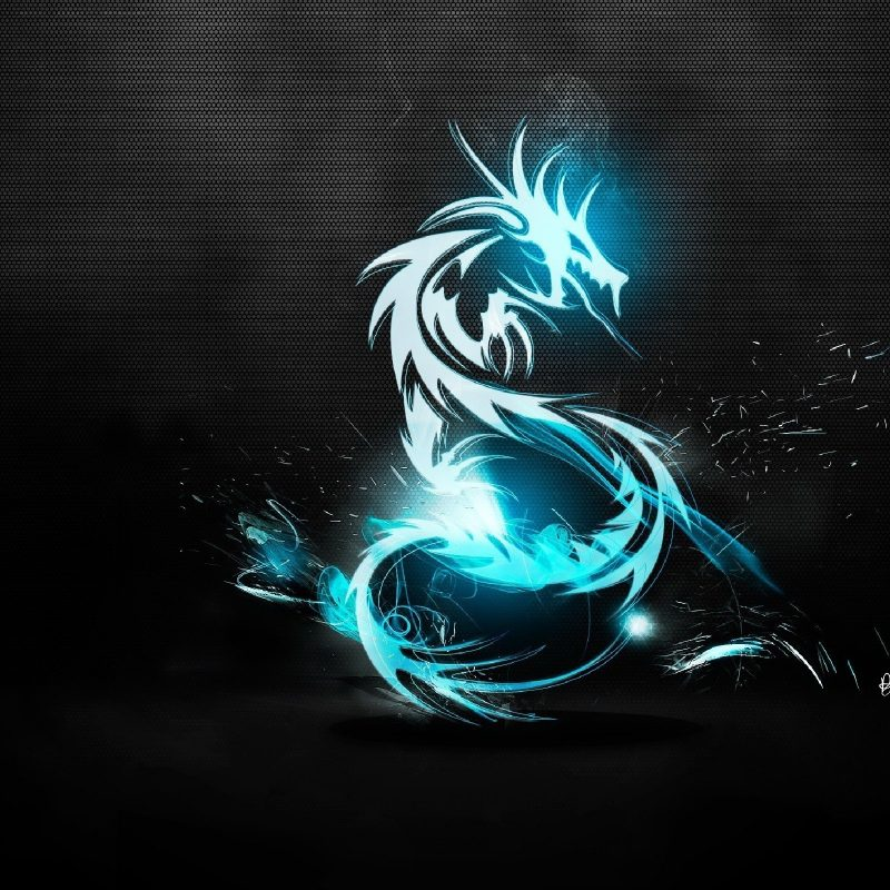 10 Latest Kali Linux Hd Wallpaper FULL HD 1080p For PC Desktop 2018 free download wallpaper illustration smoke blue dragon kali linux backtrack 800x800