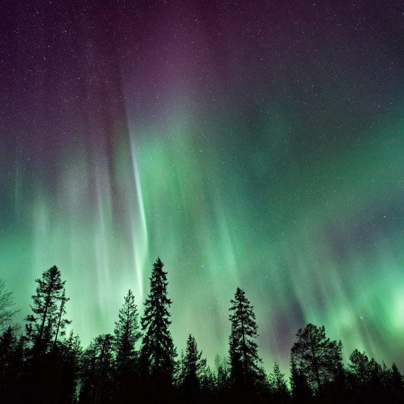 10 Latest Aurora Borealis Wallpaper Hd 1600X900 FULL HD 1080p For PC Desktop 2021 free download wallpaper northern lights forest aurora borealis 4k 8k nature 800x800