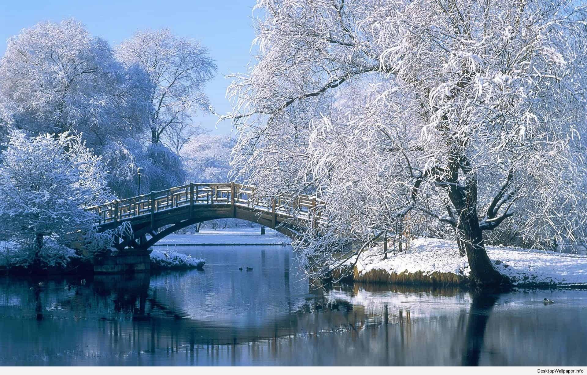 wallpaper of winter scenes | desktop wallpapers