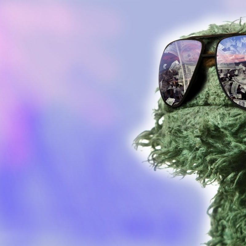 10 Latest Oscar The Grouch Background FULL HD 1080p For PC Background 2020 free download wallpaper oscar the grouch 800x800
