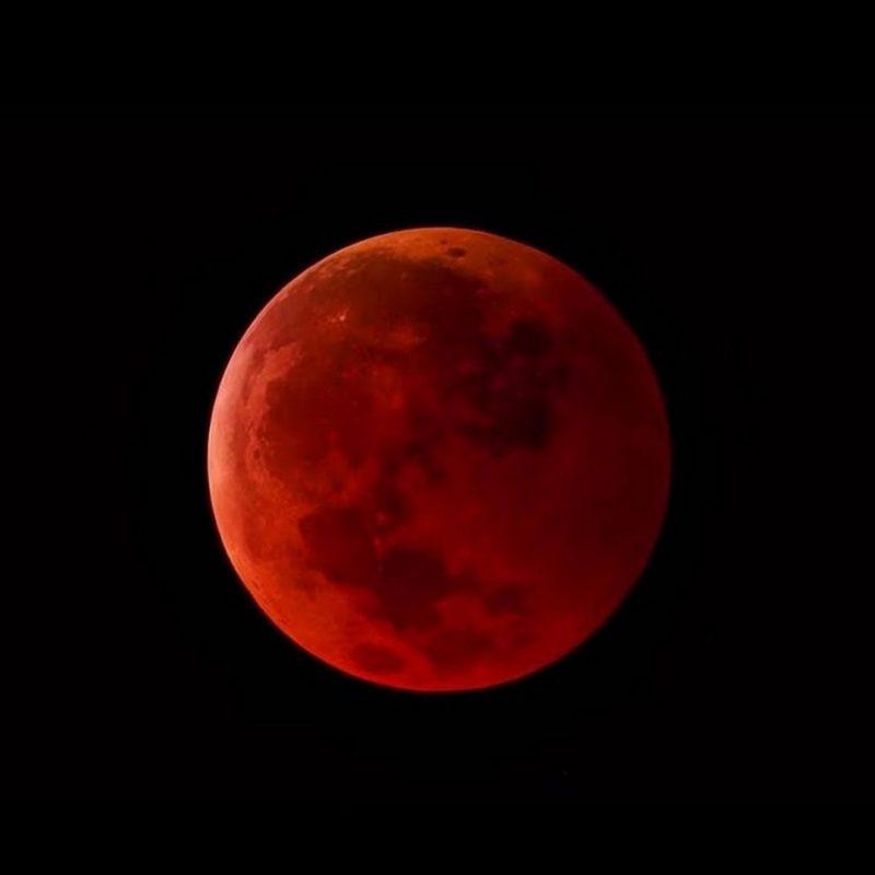10 New Blood Moon Wallpaper Hd FULL HD 1080p For PC Background 2021 free download wallpaper super blood moon 2018 cute screensavers 800x800