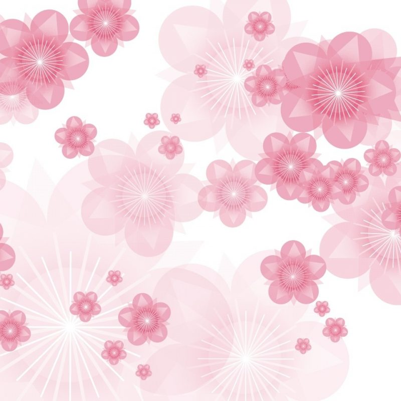 10 Top Pink Floral Wall Paper FULL HD 1080p For PC Desktop 2021 free download wallpaper uk floral wallpaper pictures gallery 800x800