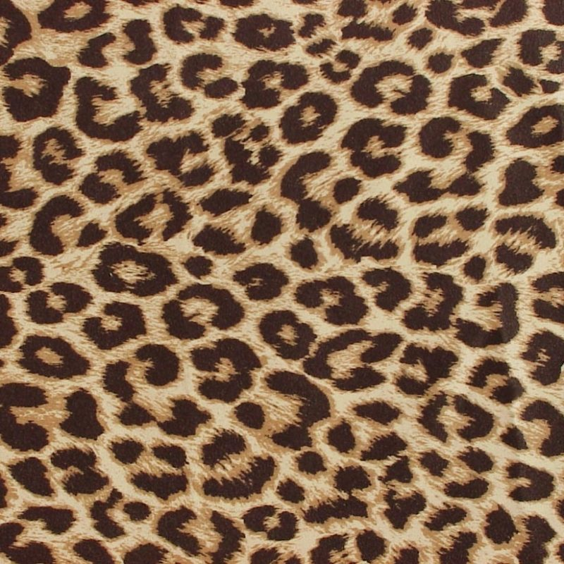 10 New Leopard Print Wallpaper Hd FULL HD 1080p For PC Background 2020 free download wallpaper wallpaper animal print 800x800