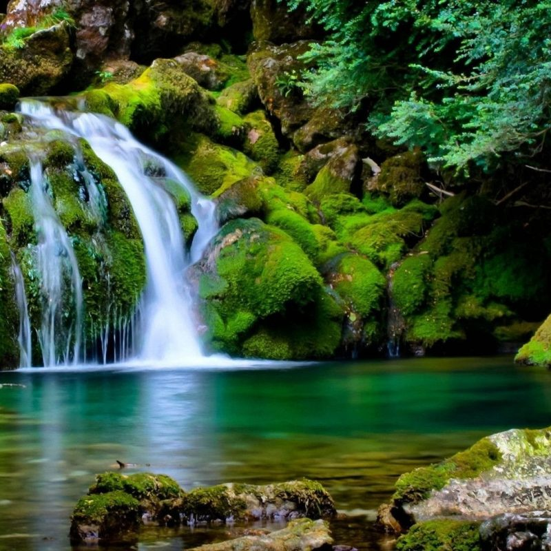 10 Top Wallpaper Hd Nature 3D FULL HD 1080p For PC Desktop 2020 free download wallpaper wiki 3d hd nature photos free download pic wpe0013544 1 800x800