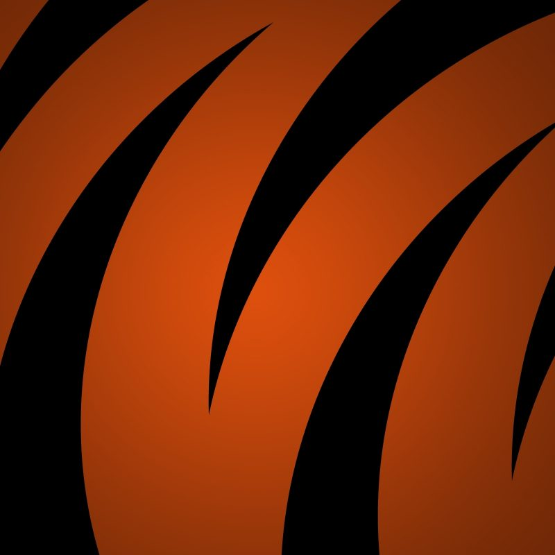 10 Best Cool Orange And Black Backgrounds FULL HD 1080p For PC Desktop 2018 free download wallpaper wiki black and orange background hd pic wpb0014810 800x800