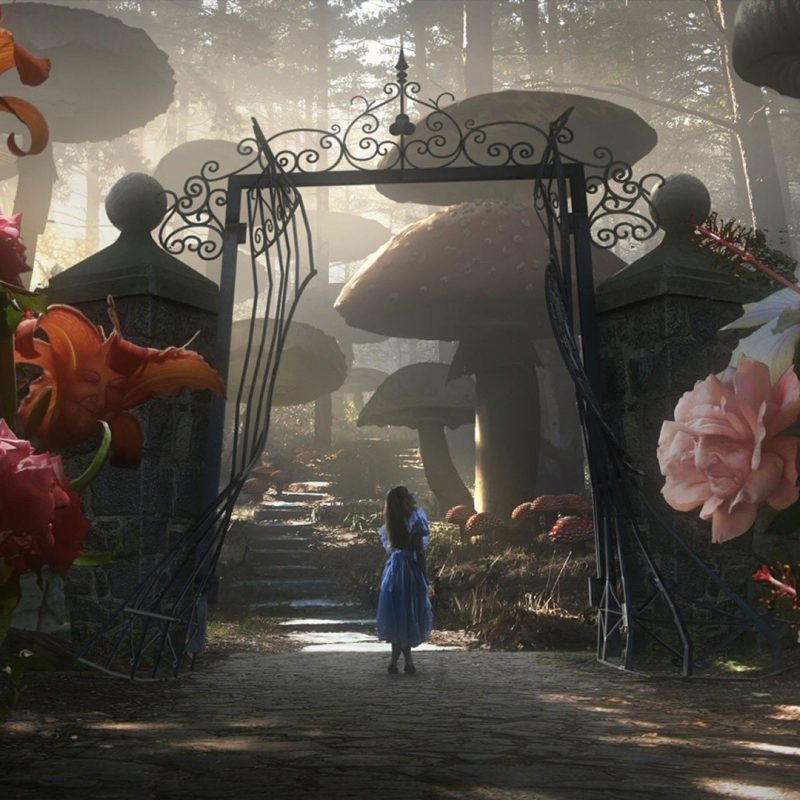 10 Most Popular Alice In Wonderland Hd Wallpaper FULL HD 1080p For PC Desktop 2020 free download wallpaper wiki download free alice in wonderland image pic wpc002171 800x800