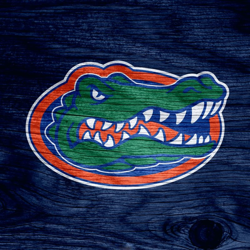 10 Best Florida Gators Desktop Wallpapers FULL HD 1920×1080 For PC Background 2020 free download wallpaper wiki florida gators photos pic wpd006741 wallpaper wiki 800x800