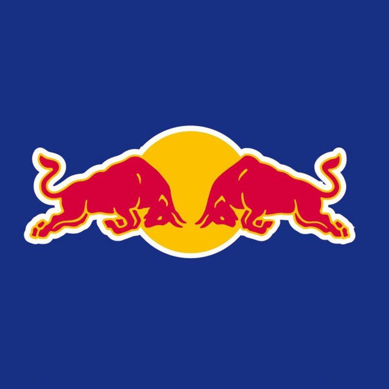10 Top Red Bull Logo Wallpaper FULL HD 1080p For PC Background 2018 free download wallpaper wiki red bull logo desktop wallpaper pic wpd005155 800x800