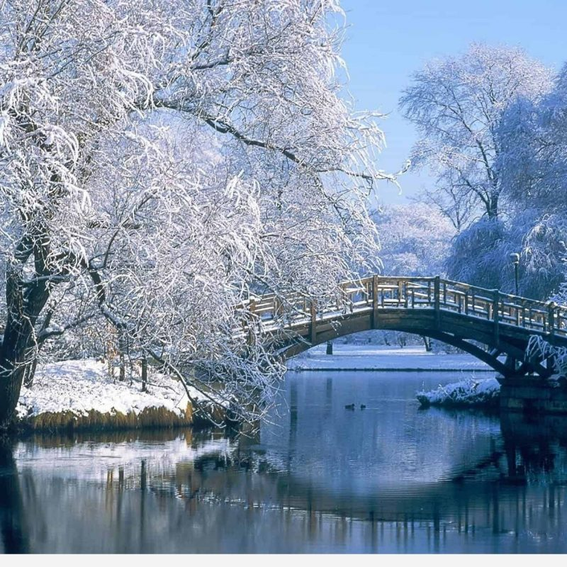 10 New Winter Scenes Wallpapers Free FULL HD 1080p For PC Desktop 2020 free download wallpaper winter scenes desktop wallpapers 1 800x800