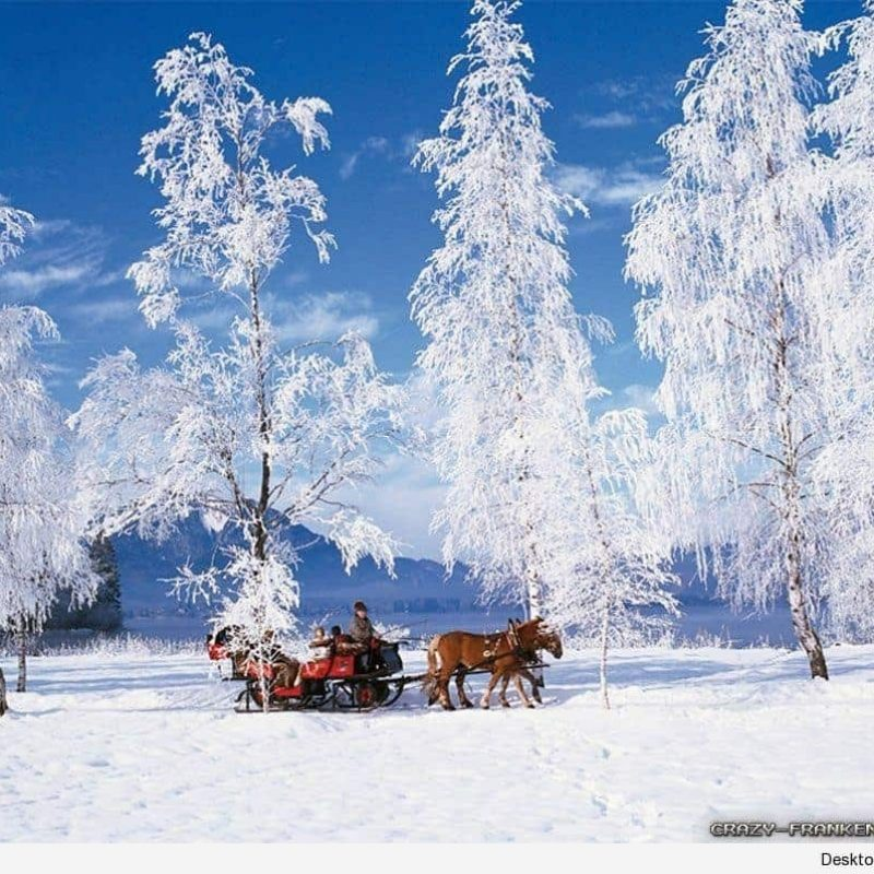10 New Winter Scenes For Desktop Backgrounds FULL HD 1080p For PC Background 2020 free download wallpaper winter scenes desktop wallpapers 2 800x800