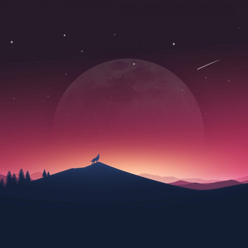 10 Best Wolf Howling At The Moon Wallpaper FULL HD 1080p For PC Background 2020 free download wallpaper wolf howling moon silhouette minimal 4k creative 800x800